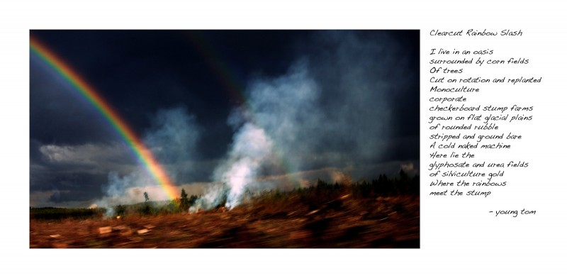 Clearcut Rainbow Slash
