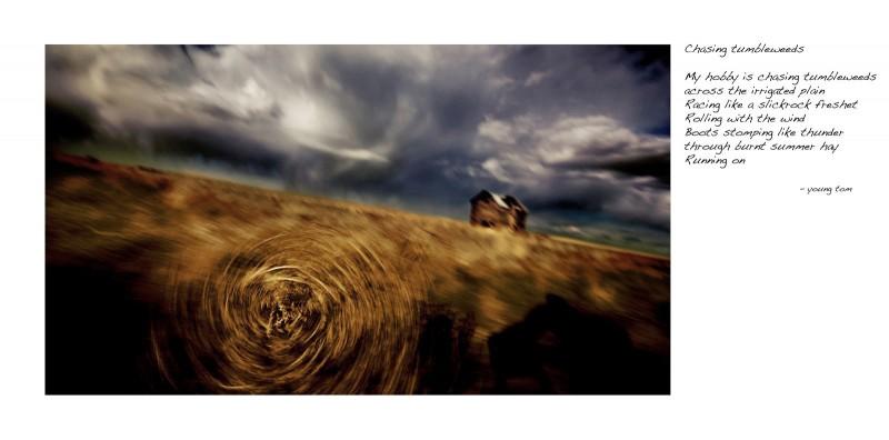 Chasing tumbleweeds