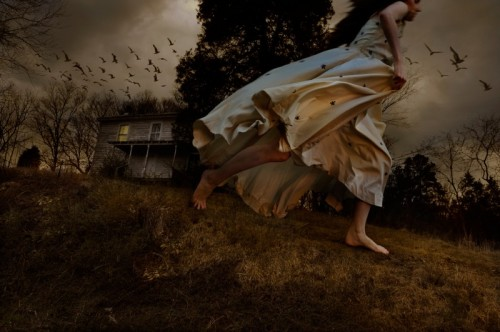 tom chambers - improbable dreams
