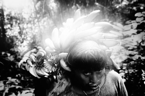 Personal long term project. Amazonas.